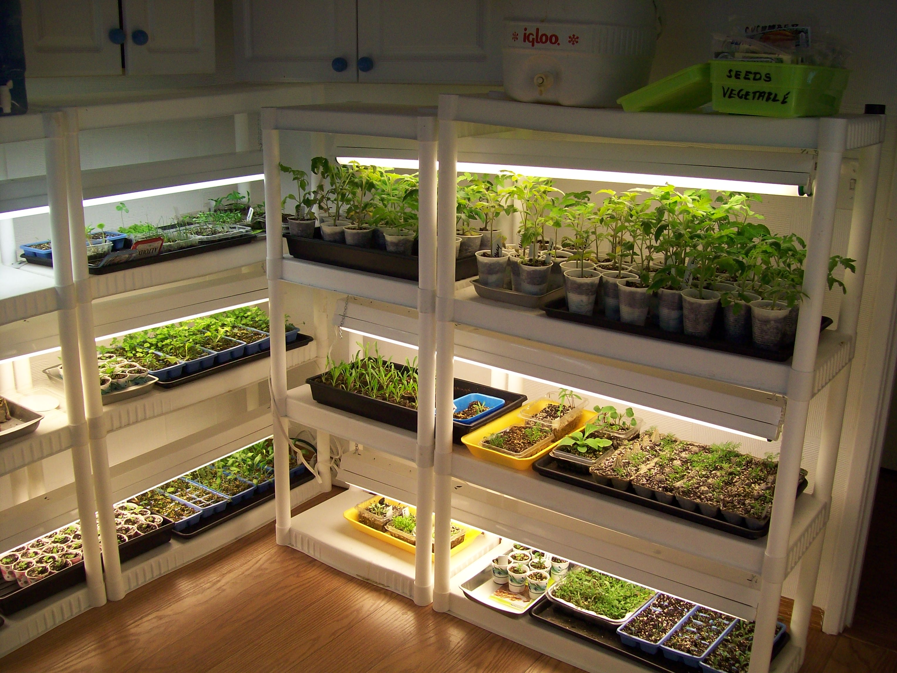 Come creare una piantagione indoor facilmente